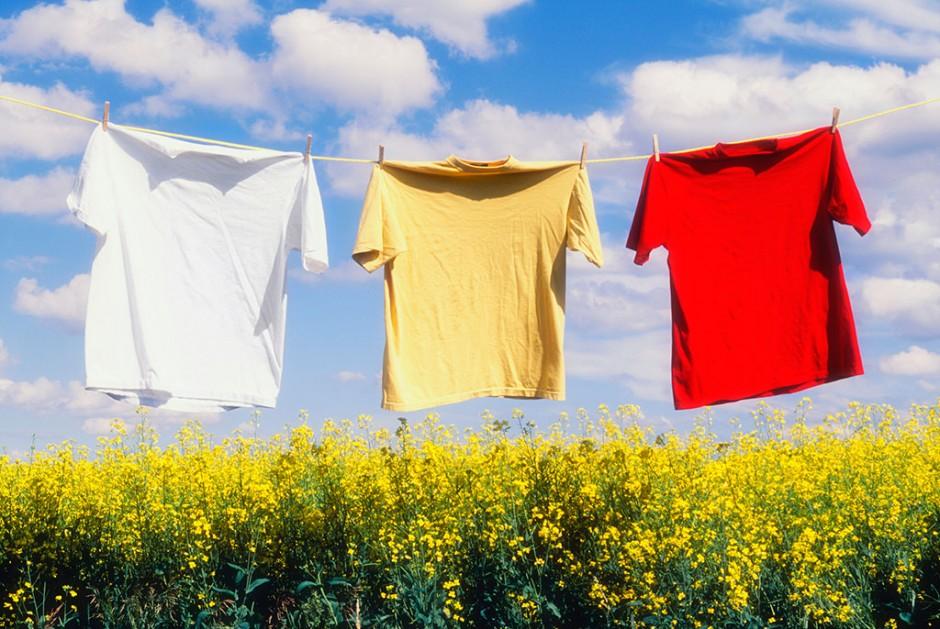 纯棉衣物常见的现象,你知道吗